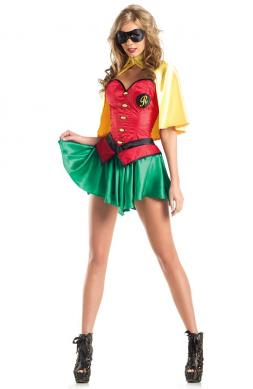 Miss Robin Costume