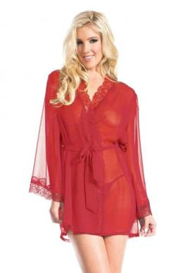 Graceful Front Tied Sheer Robe
